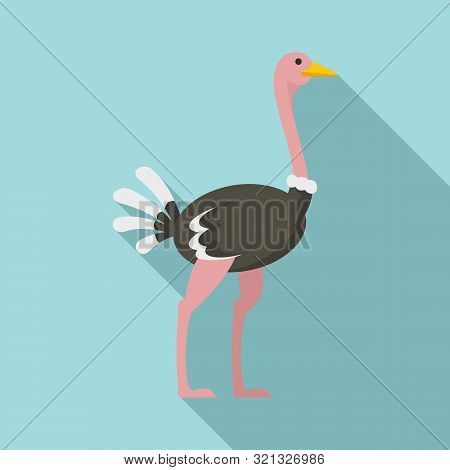 African Ostrich Icon. Flat Illustration Of African Ostrich Vector Icon For Web Design