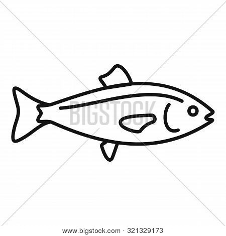 Ocean Fish Icon. Outline Ocean Fish Vector Icon For Web Design Isolated On White Background
