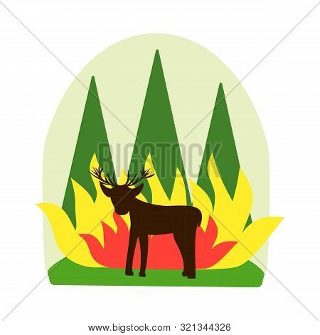 Forest Fire Concept. Destruction Of Animals And Harm To Nature