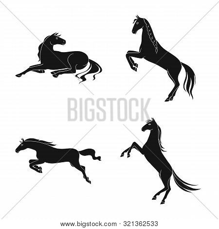 Vector Design Of Fauna And Mare Icon. Set Of Fauna And Stallion Stock Vector Illustration.