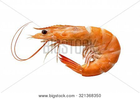Whole Cooked Shrimp Isolated On White Background. It's A Raw Material For Cooking.