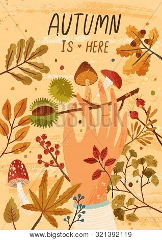 Autumn Is Here Flat Greeting Card Vector Template. Fall Season Postcard, Poster Layout. Mushrooms Pi