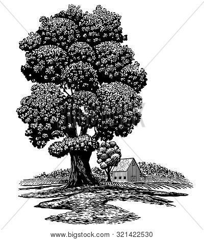 Woodcut Illustration Of An Old Tree In The Foreground With A Barn In The Background.