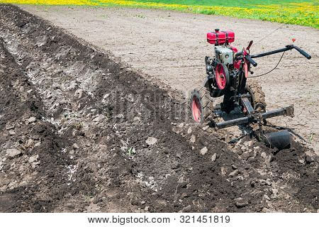 Walk-behind tractor with plow makes furrow in soil. Gasoline cultivator in the garden. poster