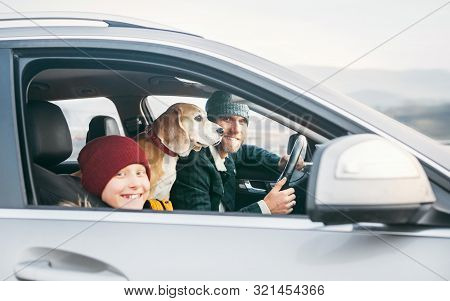 Father And Son Family Traveling By Car With Beagle Dog. They Are Smiling To Camera Fixed With Safety