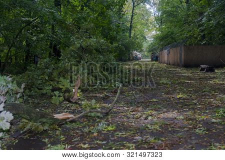 Szeged Zoo After The Heavy Storm In 2019