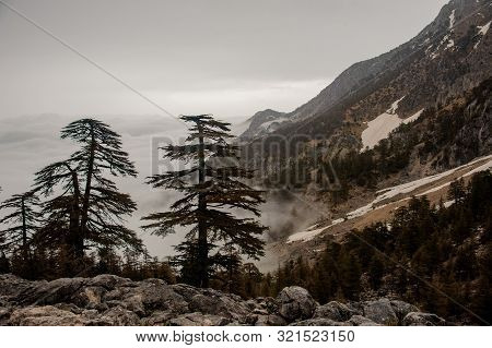 Gorgeous Landscape Of The Mountains Covered By White Fog In The Underneath