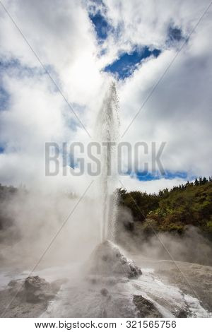 Lady Knox Geyser While Erupting In Wai-o-tapu Geothermal Area, New Zealand