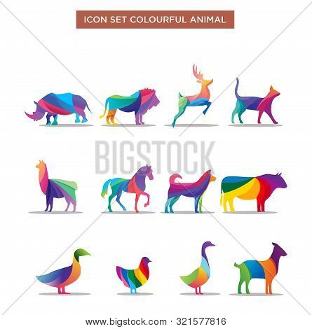 Wild Animals Jungle Pets Logo Colorful Of Geometric Polygon Abstract Character And Nature Art Graphi