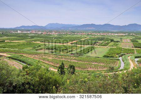 Neretva Delta Agricultural Landscape, Croatia. Fruit Orchards And Irrigation Canals.