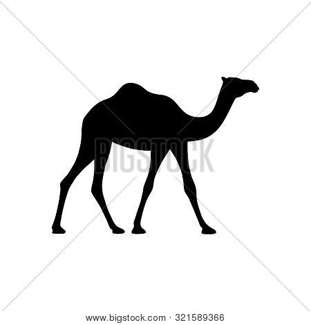 Camel Graphic Icon. Camel Black Sign Isolated On White Background. Camel Symbol Of Desert. Vector Il