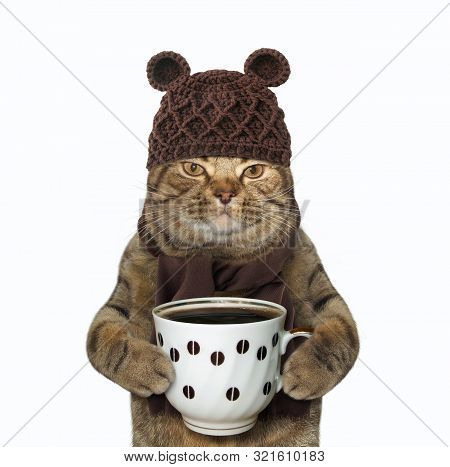 The Cat In Woolly Hat And Scarf Is Holding A Cup Of Black Coffee. White Background. Isolated.
