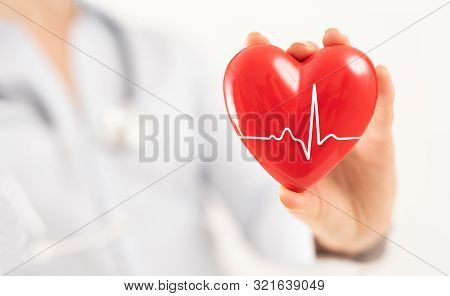 The Doctor Is Holding And Showing A Red Heart. Concept For Topics: Health, Support, International Or