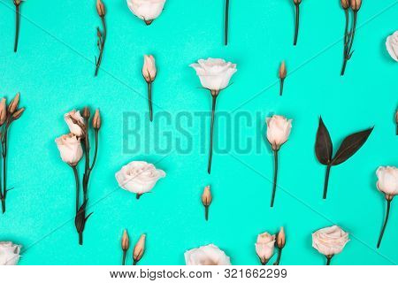 Flower Pattern On Trendy Background. Flat Lay Style