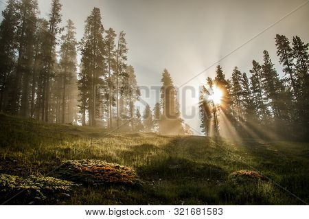 Morning Sun Rays Creating Magical Atmosphere Of One Autumn Day