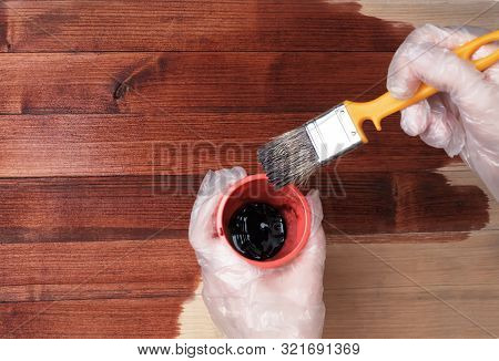 The Brush Is Dipped Into A Container With Varnish Or Paint. Close Up Hand Use Brush Paint Clear Lacq
