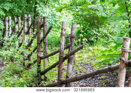 A Rustic Fence Made Of Thin Tree Trunks Fastened With A Rope, A Picket Fence, A Wooden Fence In The