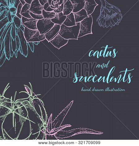 Floral Background. Hand Drawn Vector Botanical Illustration. Template Greeting Card, Wedding Invitat