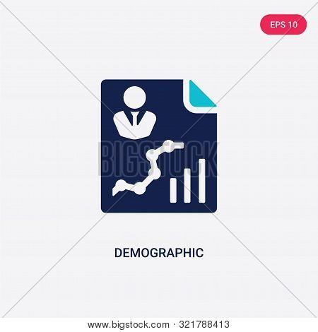 two colored demographic vector icon from big data.