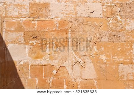 Mortuary Temple Of Hatshepsut In Deir El-bahari. Ancient Wall With The Engraved Egyptian Pictures An