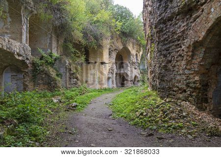 Tarakaniv ( Dubno) Ruined Fortress, Fortification. Tarakanovskiy Fort, Overgrown With Trees. Ukraine