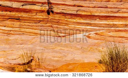 Colorful Banded Rocks In The Valley Of Fire State Park In Nevada, United States