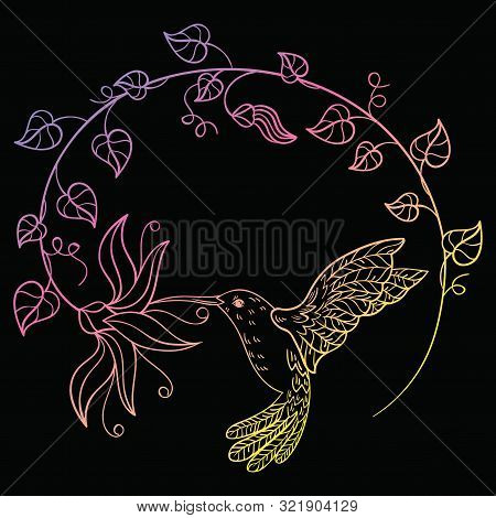 Hummingbird Drinking Nectar From A Flower. A Flying Hummingbird Inscribed In A Circle Of Flowers. St