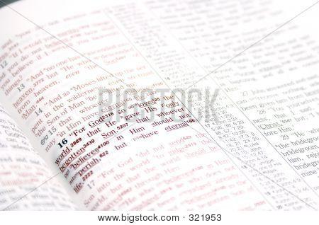 John 3:16 Ii