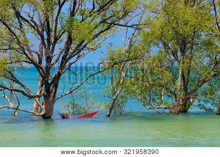 Man relaxing in a hammoc soaking in sea water between mangrove trees at high tide, Thailand