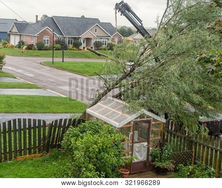 Damage to residential property from Hurricane Dorian. Crane lifting tree off a small greenhouse in a residential area.