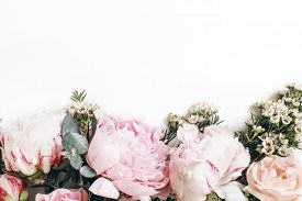 Decorative Web Banner Made Of Beautiful Pink Peonies, Rosies And Eucalyptus Isolated On White Backgr
