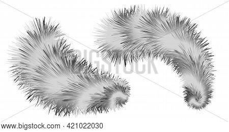 Striped Furry Brush Pompoms.  Shaggy Fluffy Fur Realistic Texture. Black And White Decorative Elemen