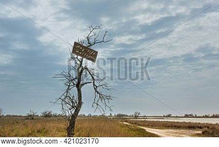 On A Dry Tree With A Broken Branch, There Is A Sign Stating That Everything In Life Matters. Steppe