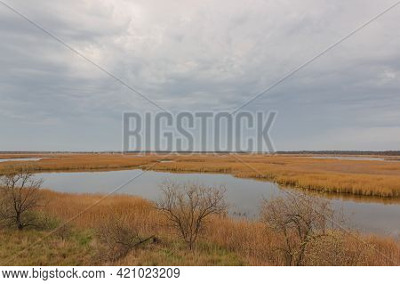 A Panoramic Top View Of The Swampy Lakes With Reeds..kinburnsky Cape Or Kinburnskaya Spit Is A Spit