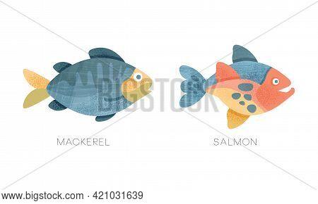 Sea Ocean Fishes Set, Mackerel, Salmon Fish Flat Vector Illustration