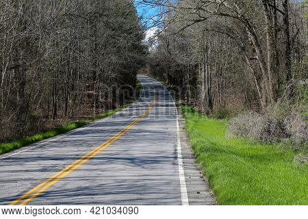 Curving Single Lane Tree Lined Road Lane With Casting Shadows In Bright Sunlight