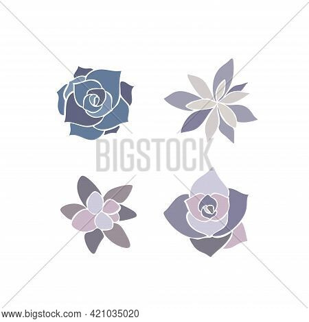 Beautiful Set Collection With Green And Lilac Succulent Cactus Hand Drawn Top View For Decoration De
