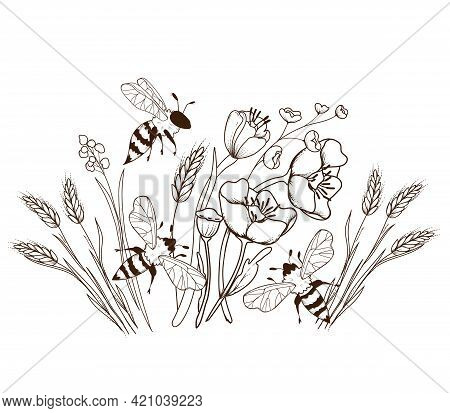 Engraving Hand Drawn Image Of Honey Bees Flying Above Wildflowers, Vector Illustration Isolated On W