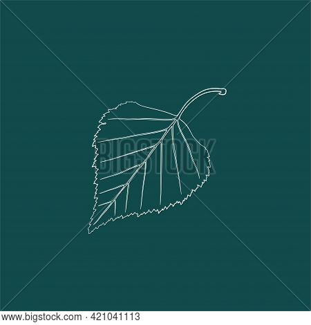 A Graceful Contoured Birch Leaf. Vector Isolated Element. White Line Logo On A Green Background. Gar