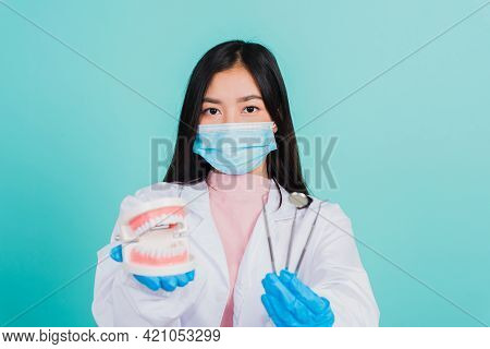 Asian Beautiful Woman Dentist Holding Professional Tool And Model Teeth Denture, Female Doctor Check