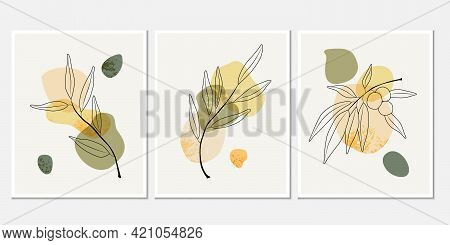 Botanical Wall Art Vector Set. Hand-raw Line Art Drawing With Abstract Shape. Abstract Plant Art Des