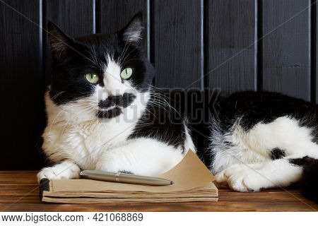 A Cute Cat Lies Next To A Notebook And A Pen. The Concept Of The Cat's Memoir And The Writer's Work.