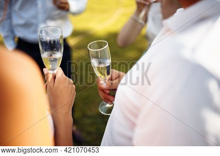 Wedding Guests Clinking Glasses. Group Of People Enjoying Champagne At Wedding Party. Guests Toastin