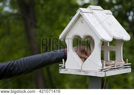 Female Hand Feeds Birds In A Feeder In An Spring Park. Girl Puts Food. Taking Care Of Birds, Natural
