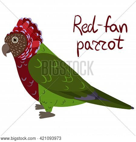 Red-fan Parrot, Also Known As The Hawk-headed Parrot In Cartoon Style On White Background. Vector Ha