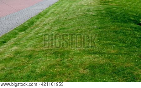 The First Mowing Of The Grass Should Not Be Too Low So That The Lawn Has More Regeneration Power. Af