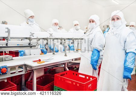 Automated Production Line In Modern Food Factory.factory For The Production Of Food From Meat.indust