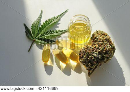Marijuana Buds, Oil Pills, Cbd  Recreation. Fresh Cannabis Leaf Close Up, Isolated On White Backgrou