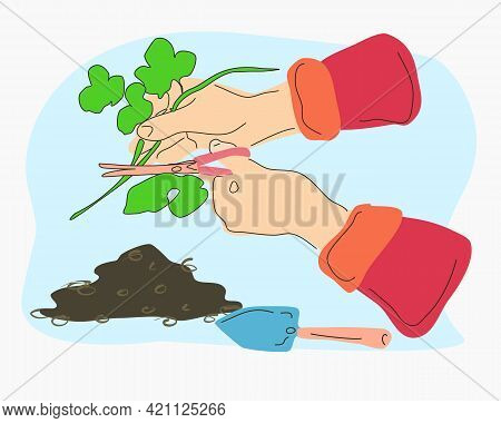 Gardening Work. Image Of Hands With Scissors And Seedlings. Illustration In Doodle Style.