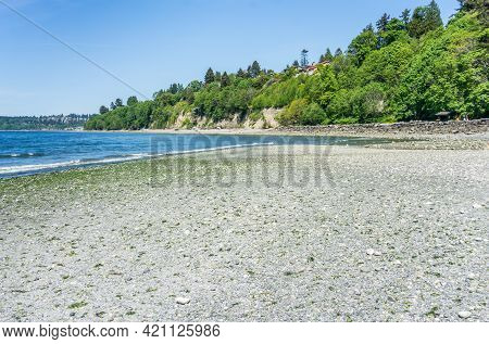 An Extreame Low Tide At Saltwater State Park In Des Moines, Washington.
